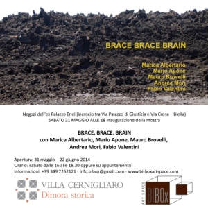 BRACE BRACE BRAIN_BI-box